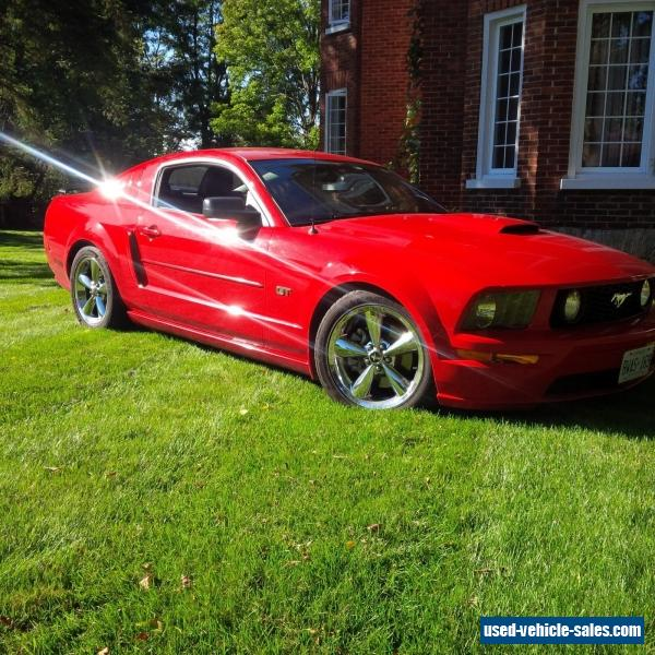 ford mustang gt for sale. Cars Review. Best American Auto & Cars Review