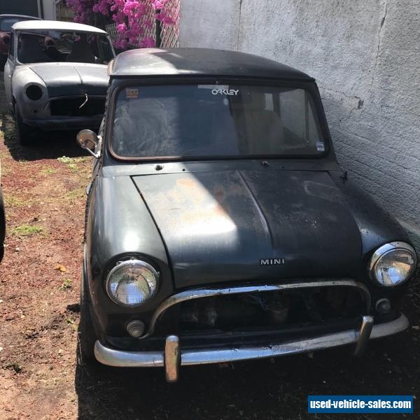 Morris Mini For Sale In Australia