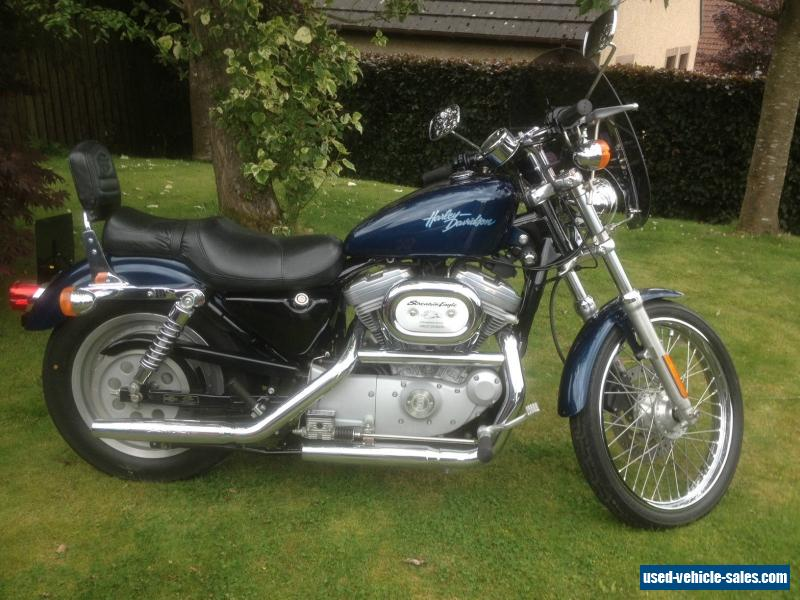 2000 harley davidson 883 xl 53c custom for sale in the united kingdom. Black Bedroom Furniture Sets. Home Design Ideas