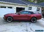 2007 Ford Mustang Deluxe for Sale