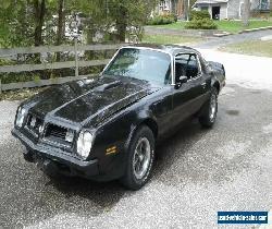 1975 PONTIAC FIREBIRD TRANS-AM for Sale