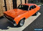 1972 Chevrolet Nova for Sale