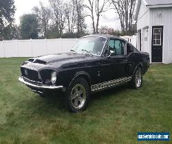 1968 Shelby for Sale
