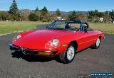 1974 Alfa Romeo Spider for Sale
