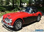1967 Austin Healey 3000 for Sale
