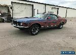 1969 Ford Mustang Fastback Mach 1 for Sale