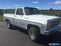 1980 Chevrolet C/K Pickup 1500 for Sale