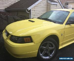 2002 Ford Mustang 2-Door Coupe for Sale