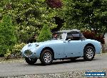 Austin Healey: Sprite for Sale