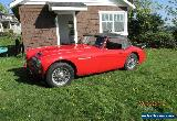 Austin Healey: 3000 Heuer Halda for Sale
