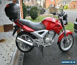 Honda 250 CBF for Sale
