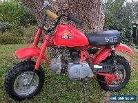 HONDA  Z50 for Sale