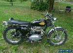 1967 BSA HORNET for Sale