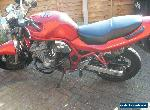bandit 600 for Sale