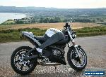 Buell XB12S Lightning for Sale