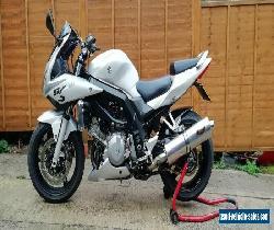 2006 Suzuki SV1000S for Sale