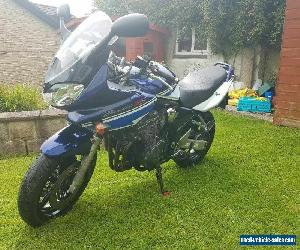 Suzuki bandit gsf 1200 k5 special edition colours for Sale