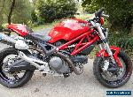DUCATI 659 MONSTER, 2013'  ABS,  LAMS approved  minor damage for Sale