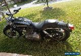 2003 Harley-Davidson Dyna for Sale