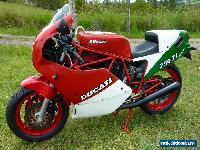 1987 DUCATI F1 750 not 900SS  for Sale