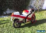 Bimota Sb 5 for Sale