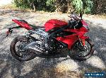 2015 Triumph Daytona for Sale