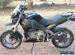 Buell Ulysses XB12X for Sale