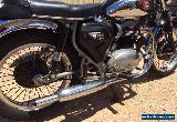 BSA 1966 A65 Spitfire for Sale